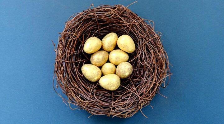 Кокошката, златните яйца и високата ефективност