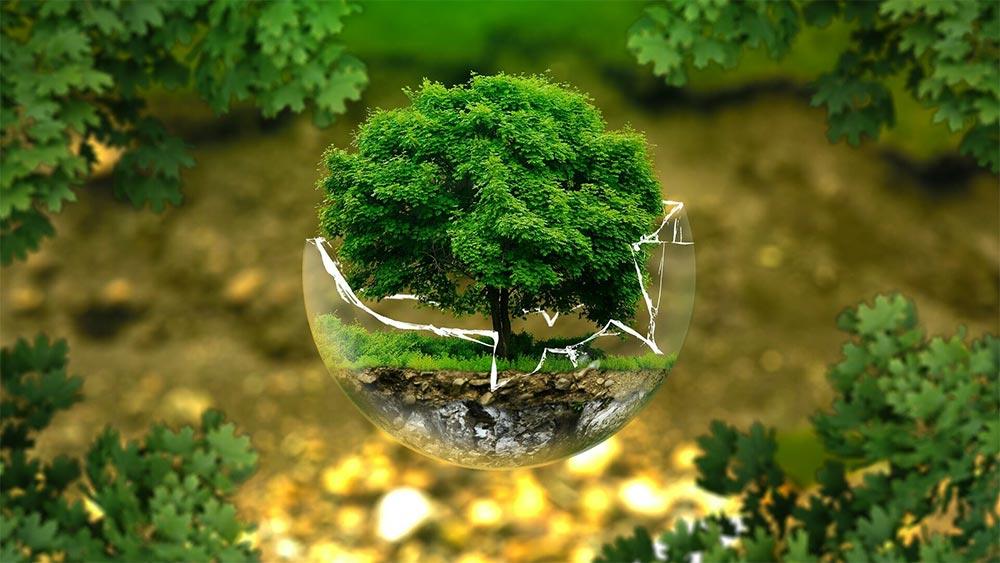 Модел за зелено управление на човешките ресурси